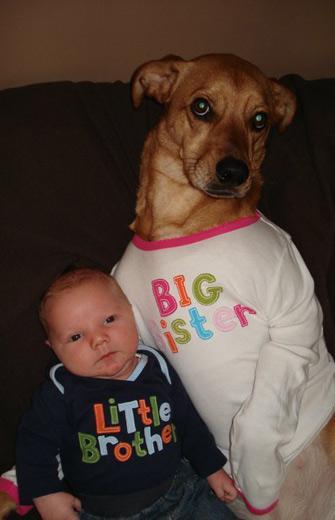 dog and baby sis