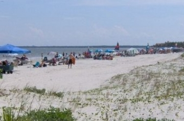 Visitors this summer enjoyed the beach on St. Simons Island with free parking.  (photo Orlando Montoya)
