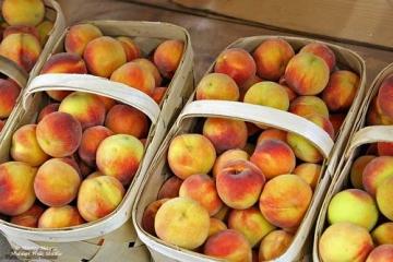 Georgia grown peaches (GPB file photo)