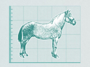 The great horsemeat scandal infographic.