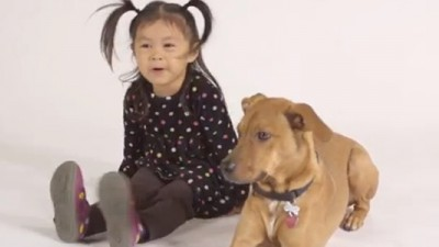 Molly and Joey are spokeschild and dog against puppy mills and pet stores that sell pups.
