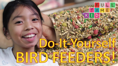 Easy DIY Bird Feeders!