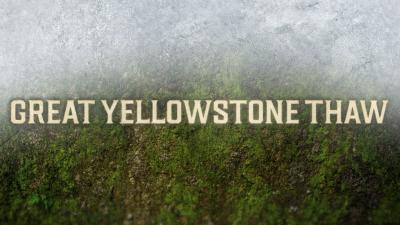 Great Yellowstone Thaw