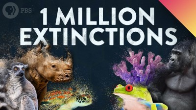 1 MILLION Species Could Go Extinct… Here's Why.