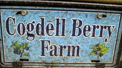 Cogdell Berry Farm