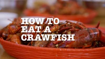 Houston: How to Eat Crawfish