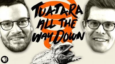 Tuatara All the Way Down