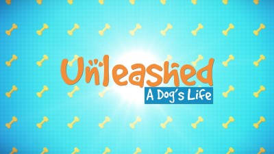 Unleashed: A Dog's Life