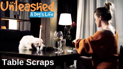 Table Scraps