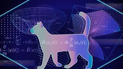 Does Quantum Immortality Save Schrödinger's Cat?