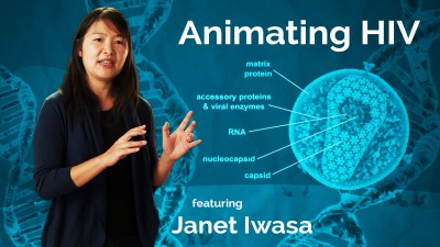 Janet Iwasa: Animating HIV
