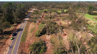 After Hurricane Michael, Another 'Perfect Storm' Hurts Georgia Pecan Growers