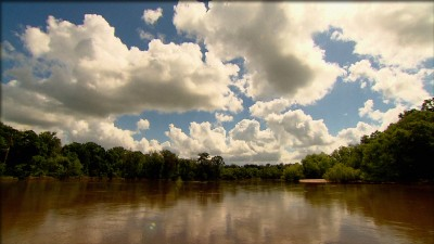 On The Altamaha
