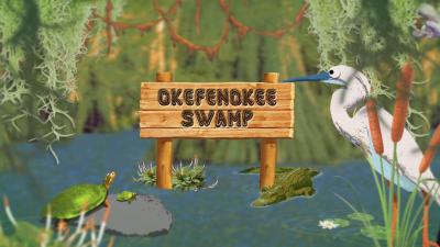 Okefenokee Swamp Live