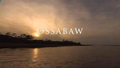Ossabaw