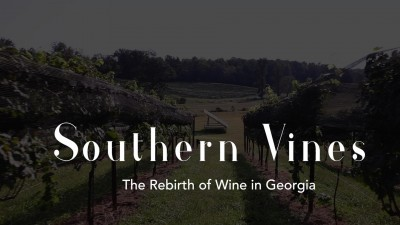 Southern Vines: The Rebirth of Wine in Georgia
