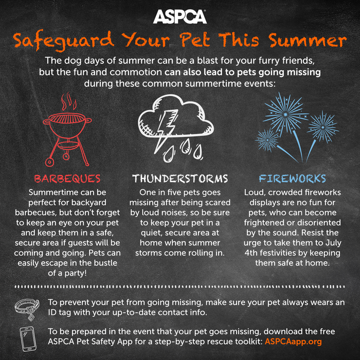 Summer Safety Tips Infographic from the ASPCA