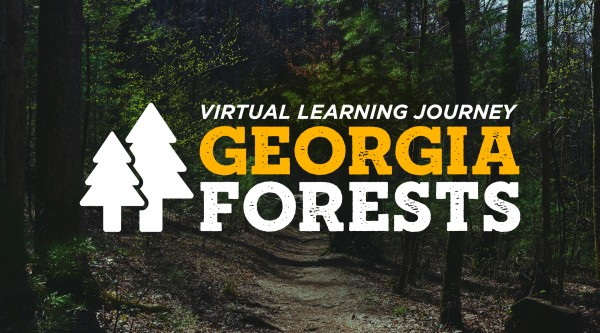 Education Resources by Subject | Georgia Public Broadcasting