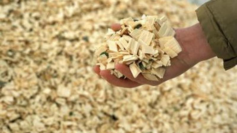 Georgia has become a national leader in the production of Biomass material for energy production