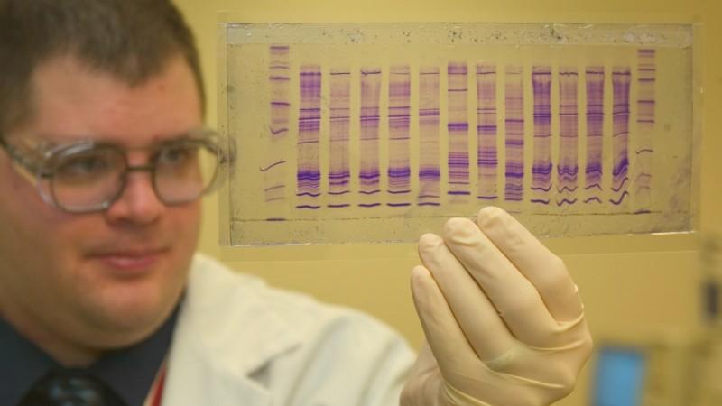"Courtesy, <a href=""http://en.wikipedia.org/wiki/DNA_profiling"" target=""_blank"">Wikipedia</a>"