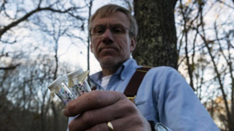 Tom Mather, researcher, captures ticks