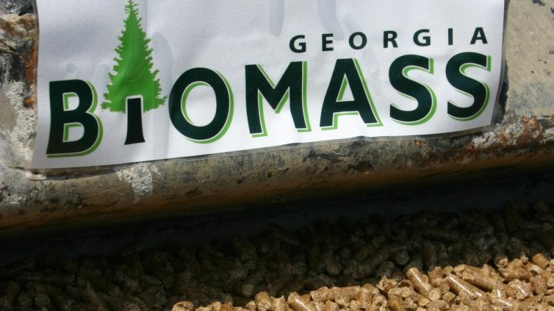 Georgia is a world leader in providing biomass energy products