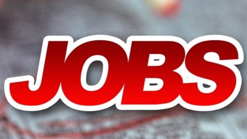 Job Fair Events for May 6-11 All Across Georgia