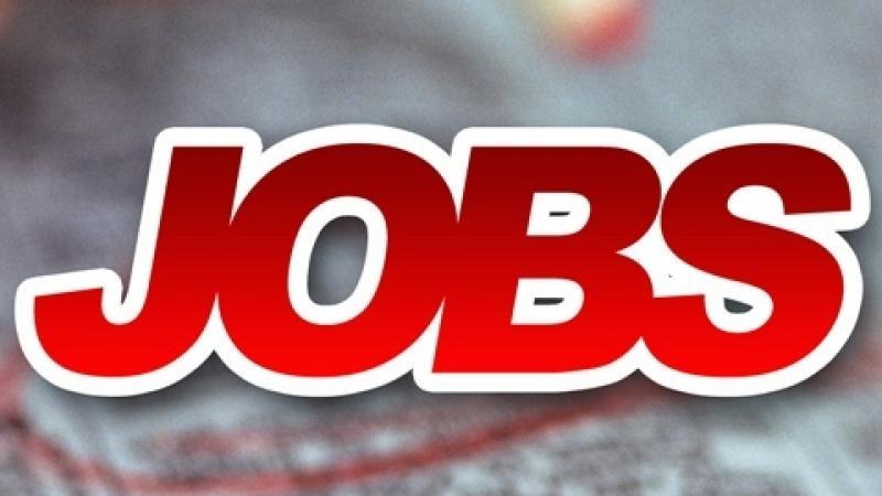 Job Fair Events Continue Across Georgia