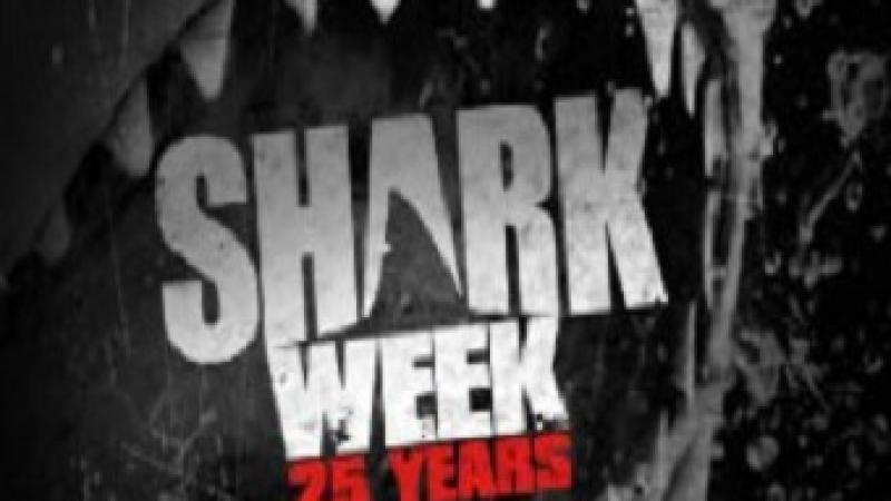 Shark Week begins this week on Discovery with a GREAT Georgia connection with Georgia Aquarium.