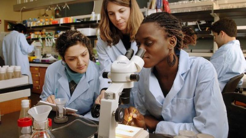 Less than 1 in 4 STEM jobs are held by women